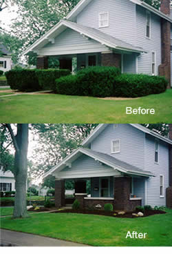 landscape staging services improve your homes curb appeal
